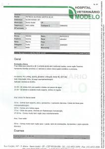 Documento 6 (pag 22 - 23)-1