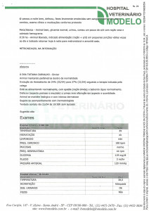 Documento 6 (pag 24 - 25)-1