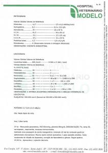 Documento 6 (pag 30 - 31)-1