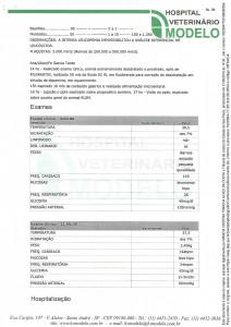 Documento 6 (pag 36 - 37)-1