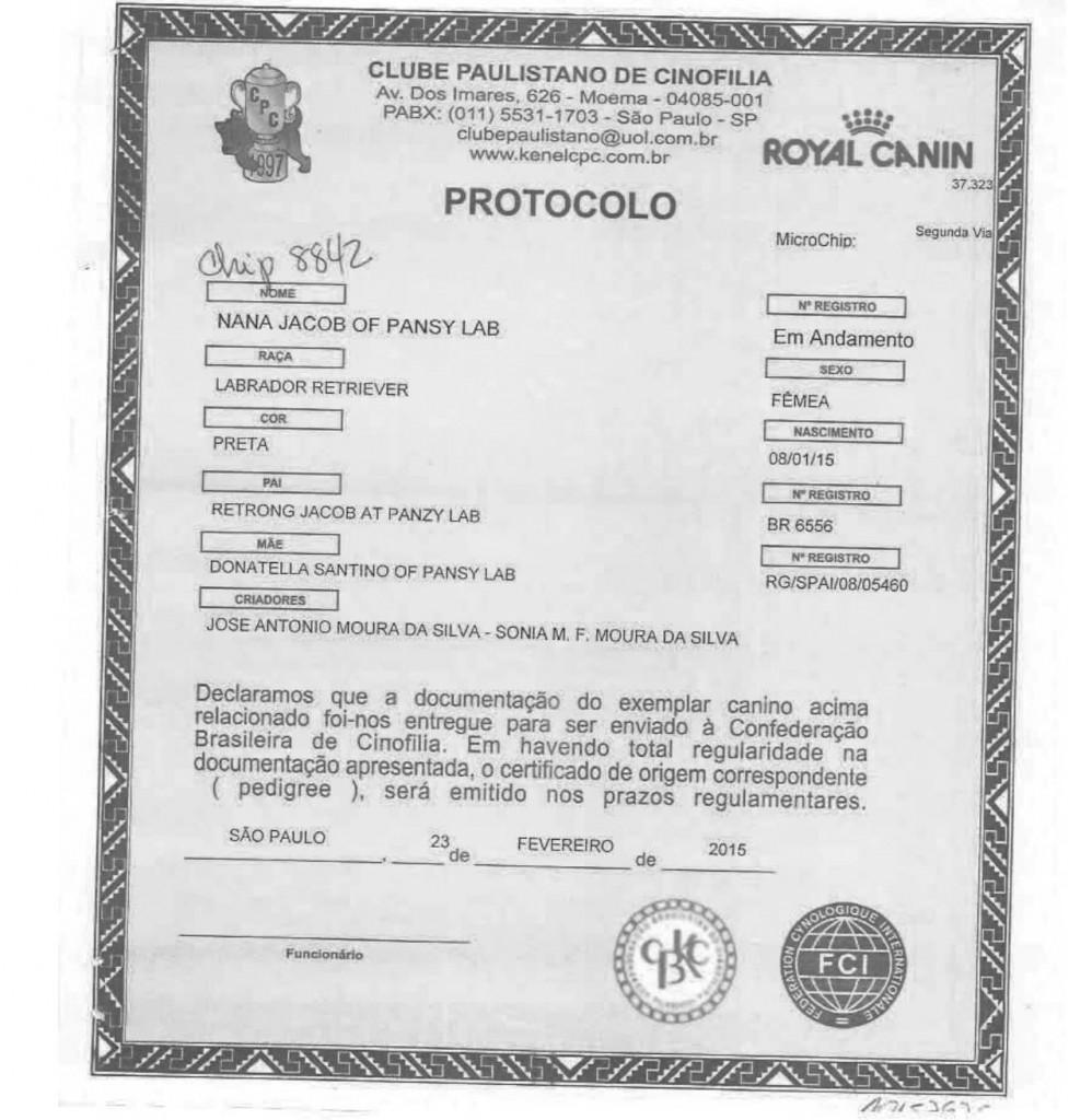 2. protocolo pedigree-1