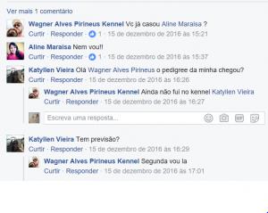 Wagner Alves Pirineus 15 DEZ 2016