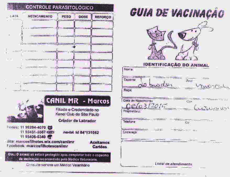 3. Vacinação 1