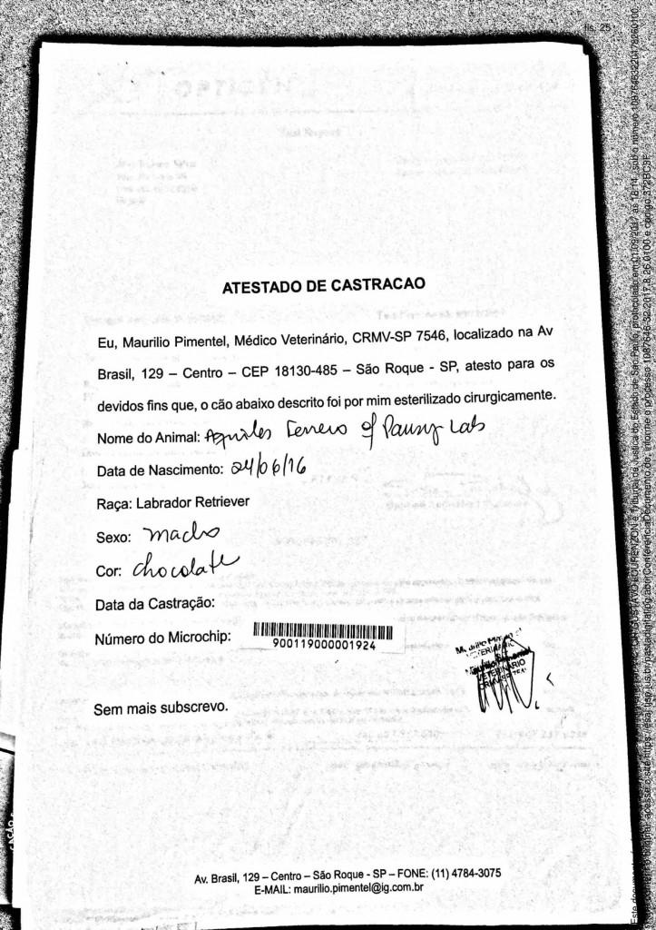 castracao-1